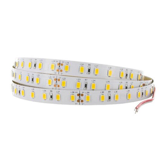 FP4 Series - LED Strips 1