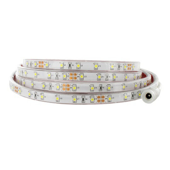 FPW Series – LED Strips